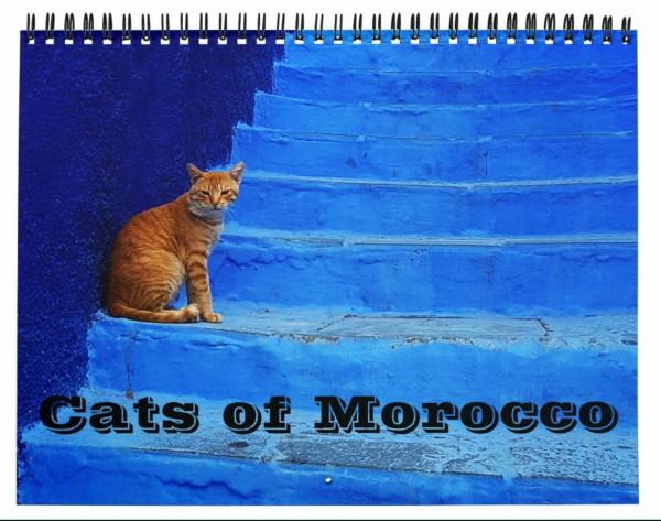 cats of morocco calendar