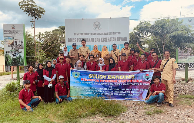 Tambah Wawasan Beternak, Puluhan Peternak Kunjungi UPT PTHMT Sulsel