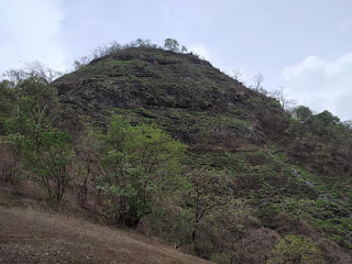 Songiri Fort Trek, Palasdhari Fort