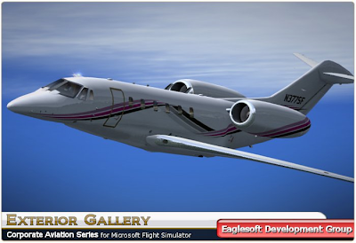Eaglesoft Cessna Citation Cj1 cracked
