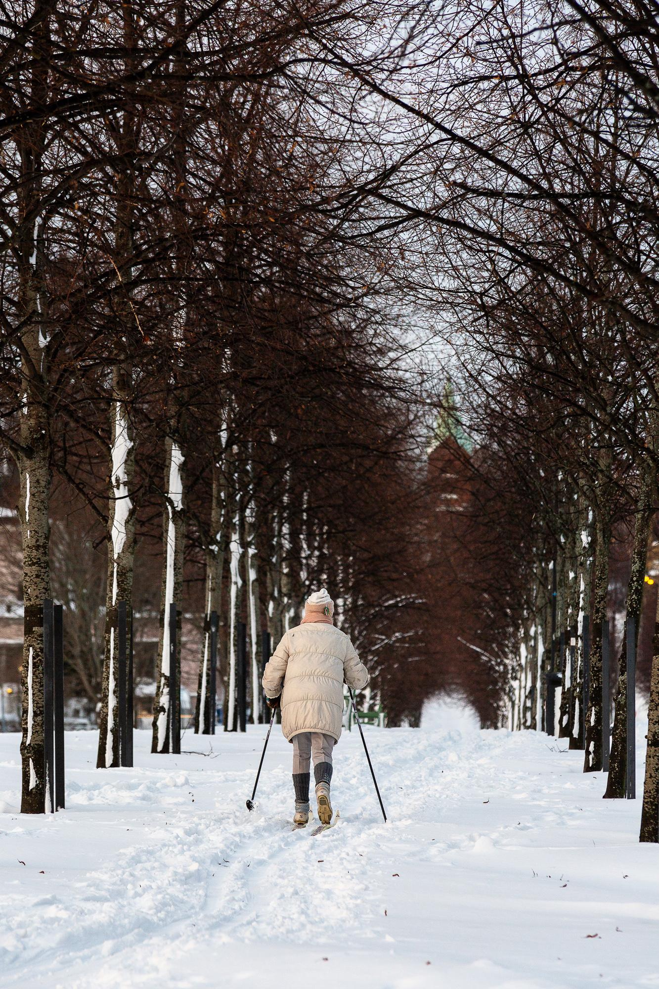 talvi, winter, suomi, finland, visitfinland, finlandphotolovers, luonto, nature, visualaddict, visualaddictfrida, valokuvaaja, photographer, Frida Steiner, skiing, Helsinki