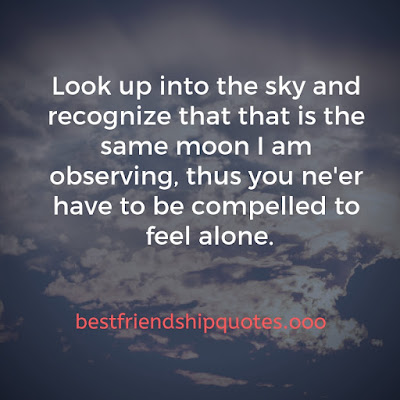 Loneliness Friendship Quotes