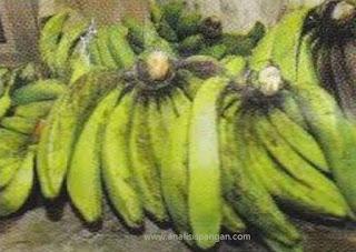 pisang ambon hijau atau lumut