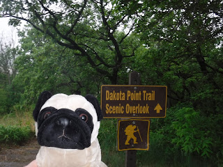 "A plush pug appears next to a brown sign that says ""Dakota Point Trail Scenic Overlook""  with an arrow pointing up, and a smaller sign below that has an icon of a man hiking."