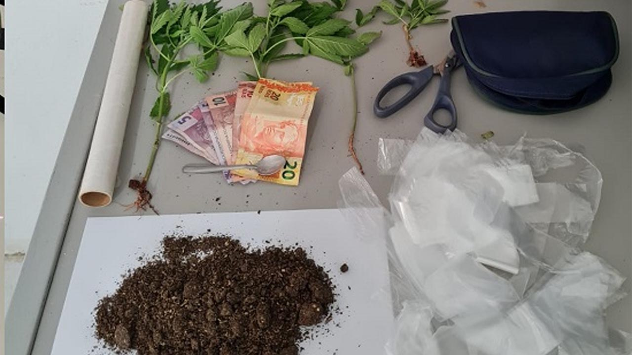 Plantava maconha no quintal e acabou preso pela Polícia em São Manuel