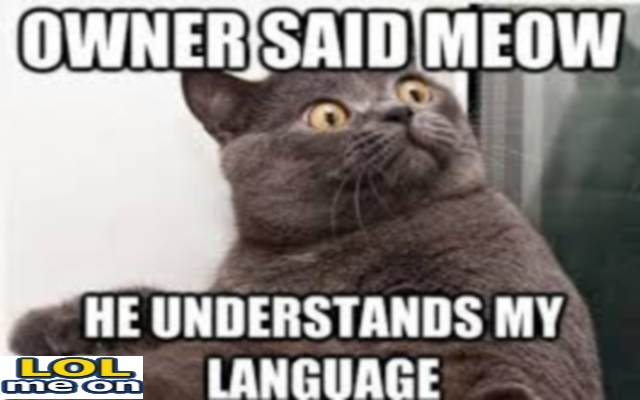 He Understands My Language - Funny Picture With Caption Funny pictures