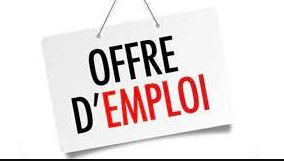 Green Finances Cameroun S.A recrute plusieurs profils