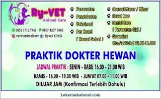 Lowongan Kerja Cat Sitter Klinik Hewan Sukabumi (Ryvet)
