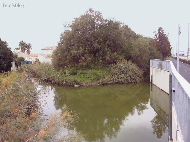 Ancien port de Pérols