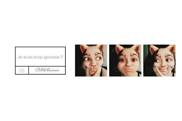 http://themelreid.blogspot.com/2017/03/billet-dhumeur-je-suis-trop-grosse-les.html