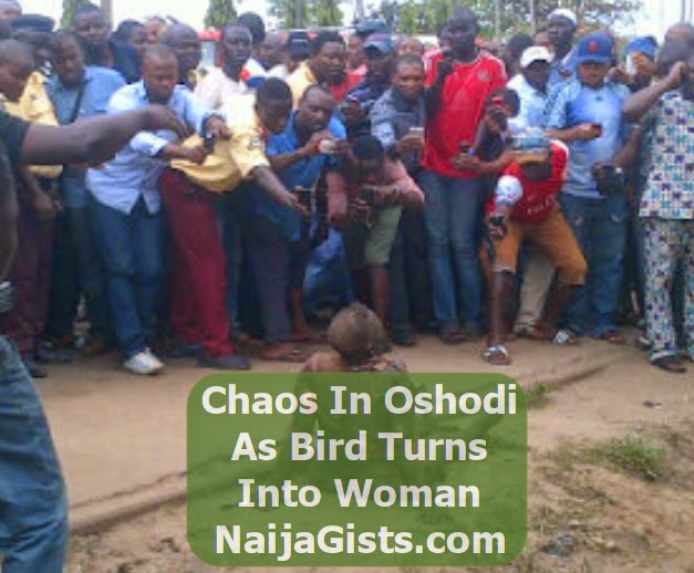 bird turn witch oshodi lagos