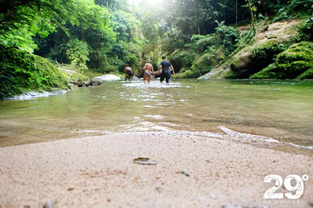 Avstickare in i djungeln...