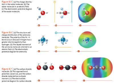 momen dipol dan diagram elektrostatik molekul