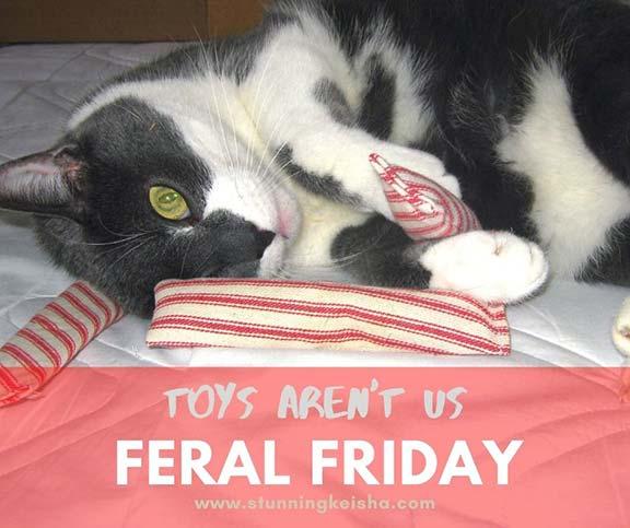 Flashback Friday: Toys Aren't Us