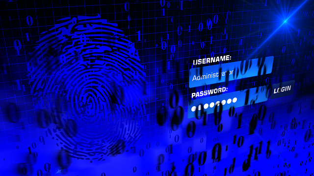 The Most Common Password list used on the Internet