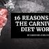 16 razões pelas quais a dieta carnívora funciona (a ciência por trás dela)