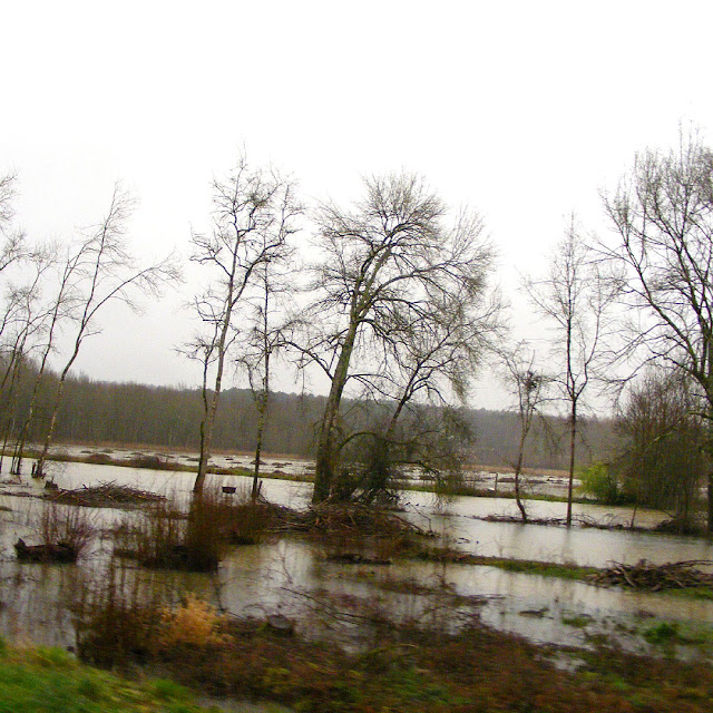 Flooding on the Indre, Indre et Loire, France. Photo by Loire Valley Time Travel.