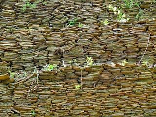 Un curioso vertedero romano perfectamente organizado
