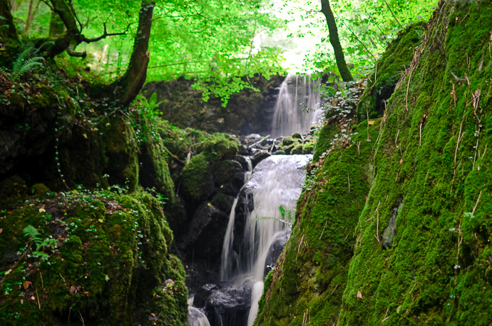 Canonteign falls, Days out in devon
