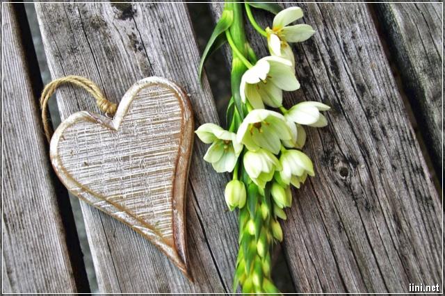 ảnh miếng gỗ hình trái tim đẹp