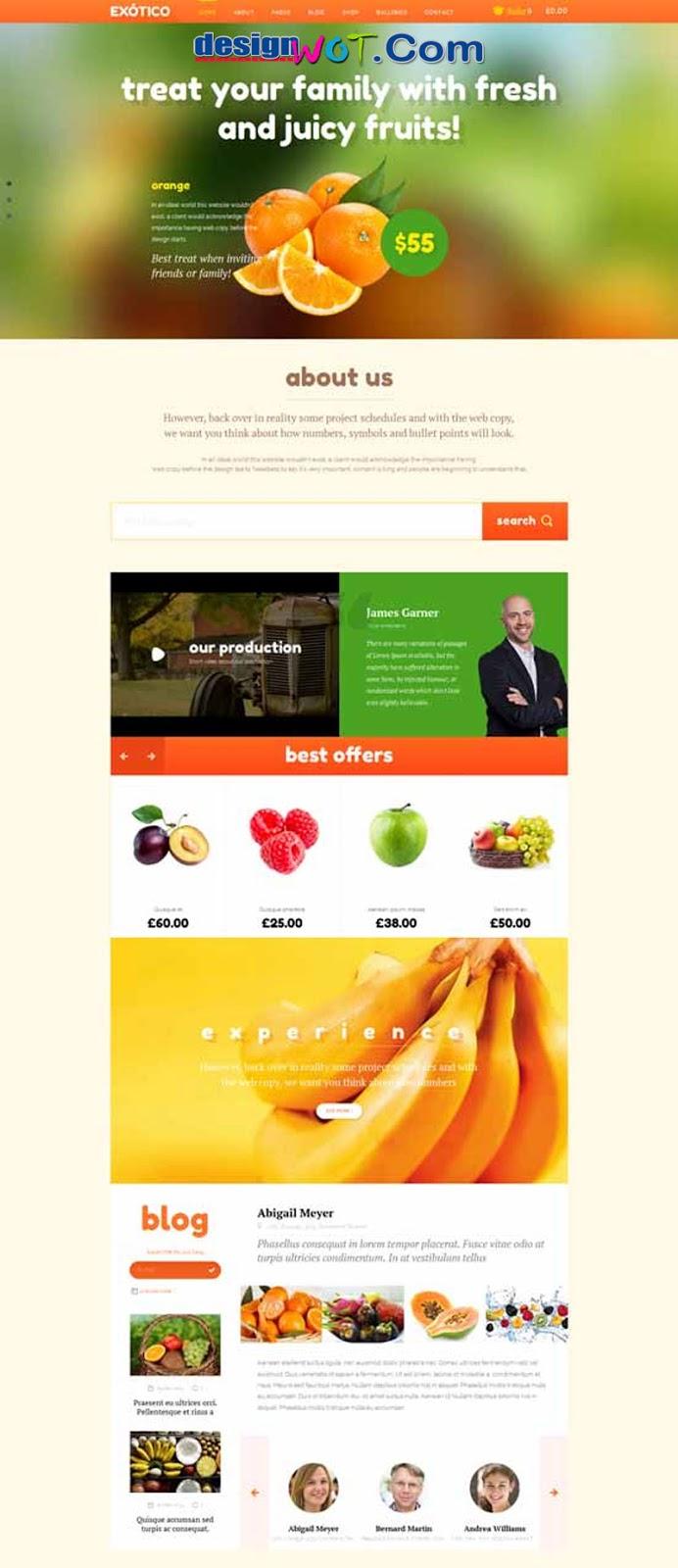 Exotico Responsive WordPress Theme