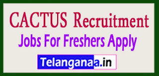 CACTUS Recruitment 2017 Jobs For Freshers Apply