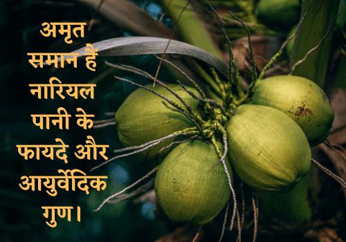 अमृत समान हैं नारियल पानी के फायदे और आयुर्वेदिक गुण।