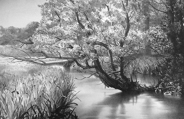 a Stow Wengenroth print of a tree in marsh wetlands