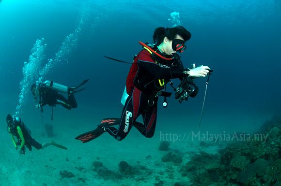 Mantanani Diving