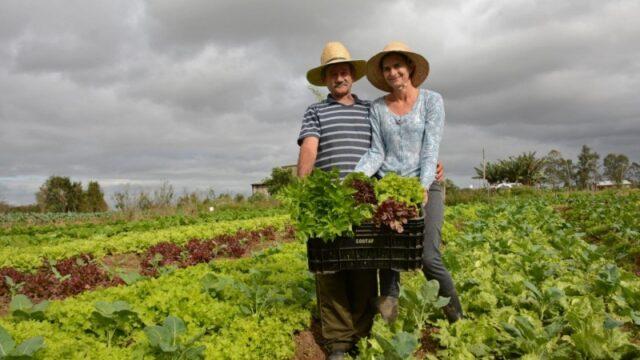 Agricultura familiar: governo prorroga dívidas e cria novas linhas de crédito