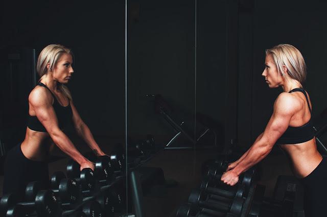 Musculature des bras