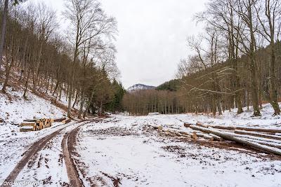 Szlak zielony w kierunku Unisławia Śląskiego (Unisławskie Łąki); pierwszy kontakt wzrokowy ze Stożkiem Wielkim