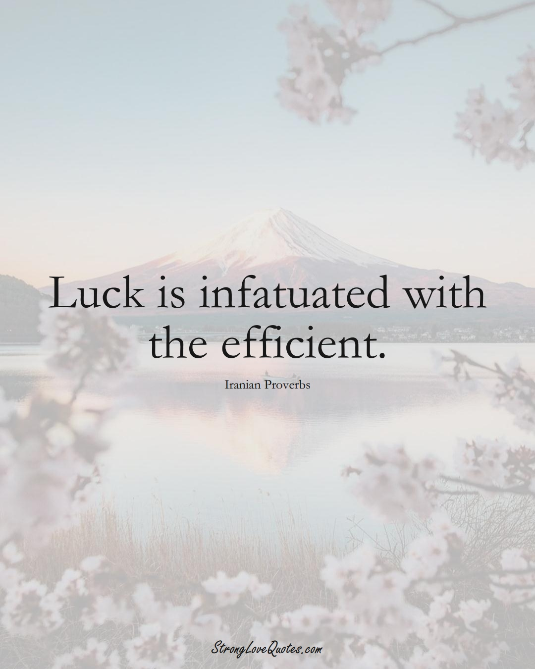 Luck is infatuated with the efficient. (Iranian Sayings);  #MiddleEasternSayings