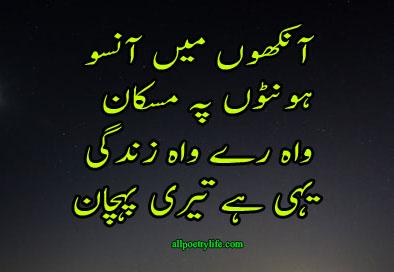 Zindagi Ki Pahchan | sad beautiful Poetry About On Life In Urdu | Sad shayari About on Life In Urdu