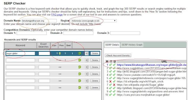 Cara Mengetahui Peringkat Keyword Dengan SEO Checker di Google