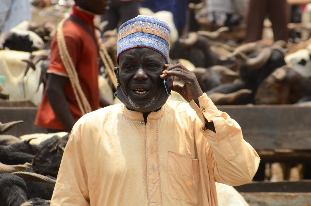 A vendor making phone call as rams are on displayed on sale for the Eid al-Adha festival at the market in Kara Isheri in Ogun State, southwest Nigeria, ahead of the Muslim festival of Eid al-Adah on July 29, 2020.