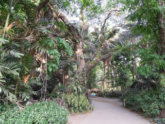 Top 5 Best Places To Visit In Quezon City For Communing With Nature