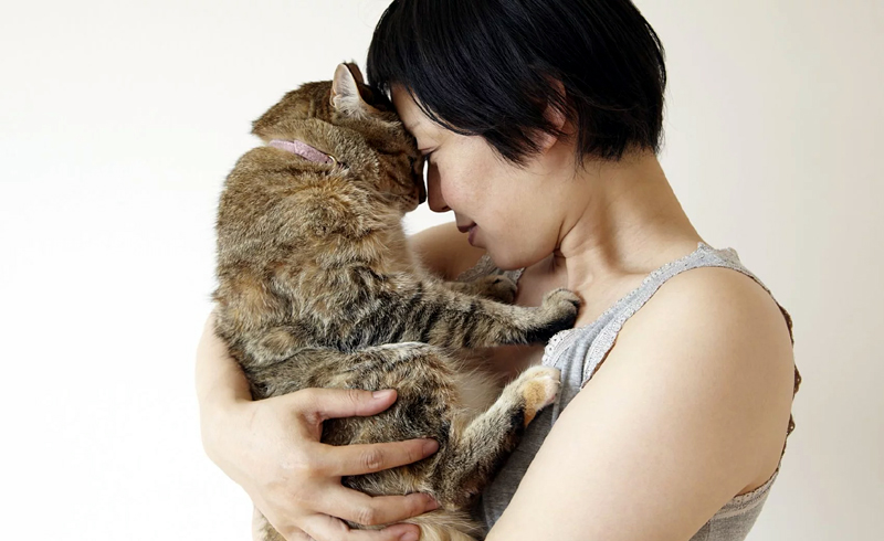 Cats Are Quarantine Heroes, Keeping Their Owners Happy During the Pandemic, Survey Finds