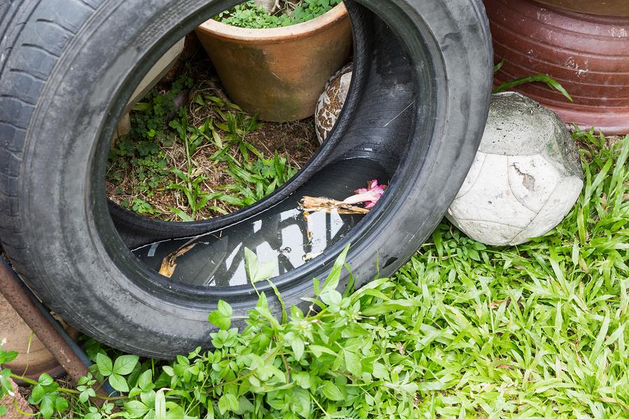 TrashTalkin'Lynn: Get Rid of Mosquito Breeding Old Tires