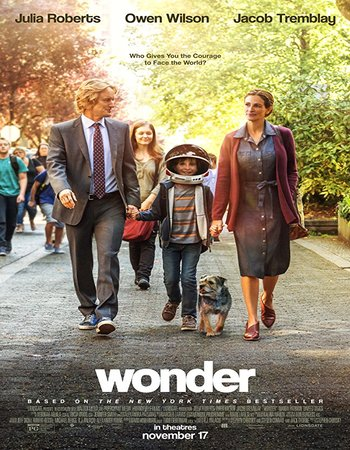Wonder (2017) English 300MB