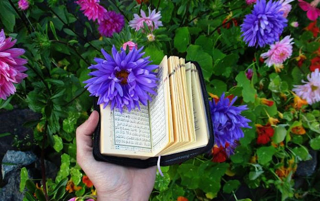 https://www.abusyuja.com/2020/10/surat-al-anfal-pokok-kandungan-khasiat-fadhilah.html