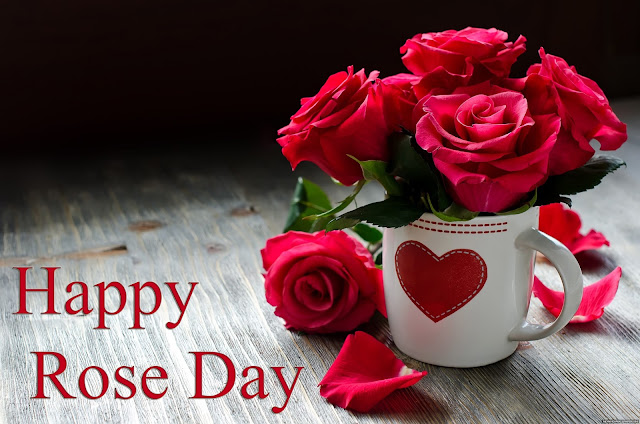 rose day images and messages