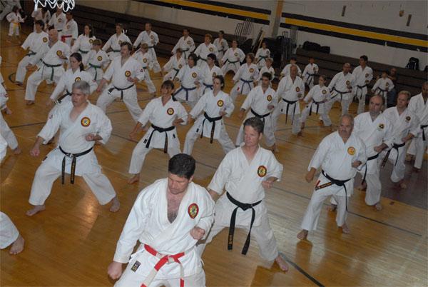 Associao de Karate Pepi  Blumenau SC Brasil Drages