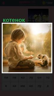 около окна на подоконнике мальчик играет с котенокм