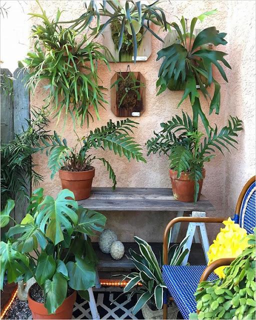 very small garden ideas on a budget UK