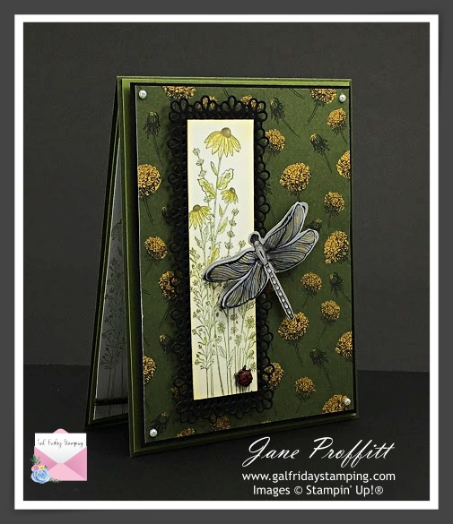 Dragonfly Garden from Stampin' Up! Card created by Gal Friday Stamping
