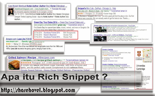 Apa Itu Rich Snippet by sharehovel