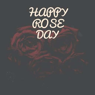 Happy Rose Day Hd Images