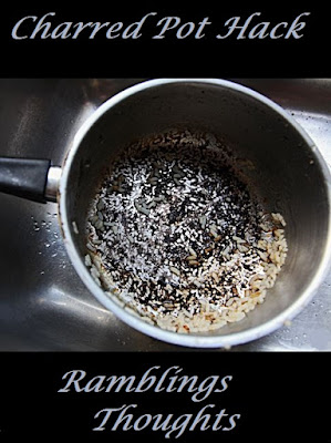 Ramblings Thoughts, Tip, Trick, Hack, Pots, Cleaning, Charred, Burnt, How-to,