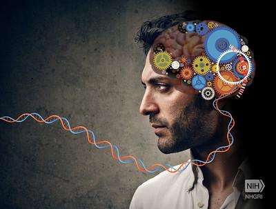 Download Konsep Teori Skizofrenia, Pengetahuan dan Keluarga